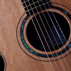 Terry Docherty Guitar